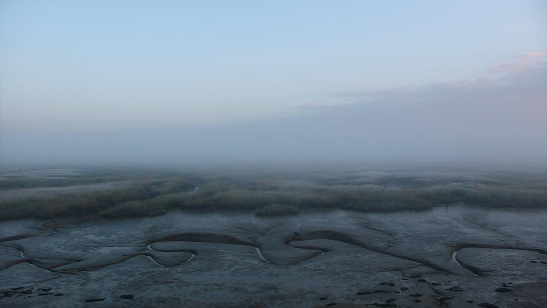 fog-creek